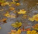 Погода в Туле 8 сентября: до +18 градусов, дождь и ветер