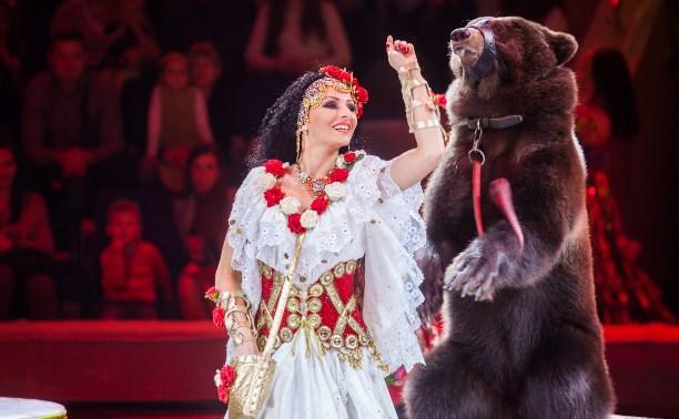 «Баронеты» в Тульском цирке: медведи, лошади и лилигры