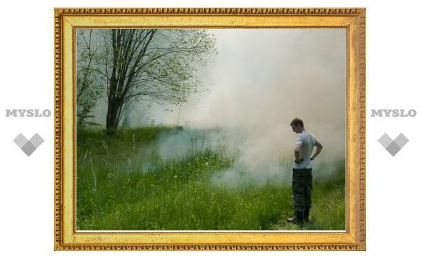 В Туле ожидается пожарная опасность выше нормы