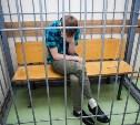 За зверское убийство пенсионерки туляк отправится в колонию на 17 лет