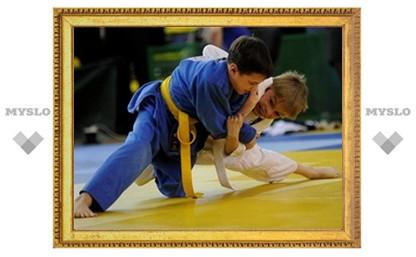 Школьник из Новомосковска стал первым в соревнованиях по дзюдо
