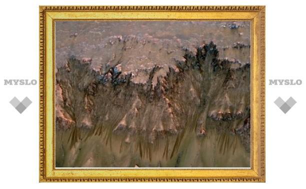 Ученые обнаружили на Марсе следы соленых ручьев
