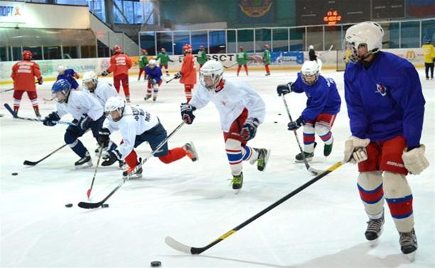 В Новомосковске разыграют хоккейный кубок SKODA