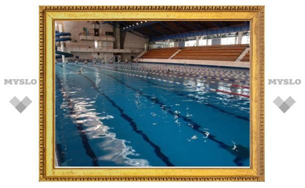 Владимир Груздев пообещал тулякам два новых бассейна к декабрю 2012 года