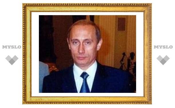 15 туляков будут защищать Путина