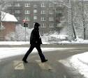 Госдуме предложили в два раза увеличить штрафы для пешеходов-нарушителей