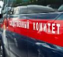 Воронежские следователи просят у туляков помощи в розыске несовершеннолетней