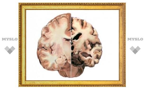 Новое лекарство от болезни Альцгеймера восстановило память у мышей