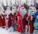 В Центральном парке пройдёт «Битва Дедов Морозов»