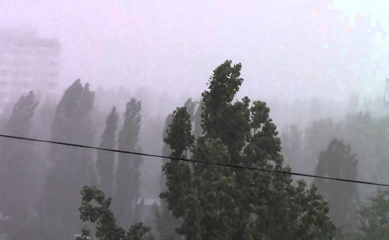 Метеопредупреждение: на Тульскую область надвигаются грозы и сильный ветер