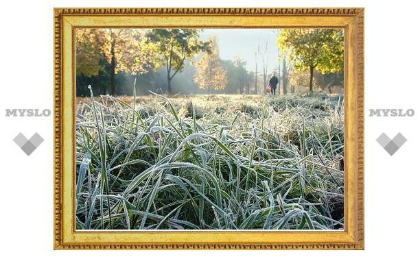 На этой неделе в Туле возможны заморозки