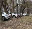 В Туле за парковку на газонах будут штрафовать на 2 тысячи рублей