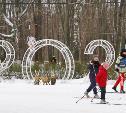 Наконец-то выпал снег: туляки катаются на лыжах в Центральном парке
