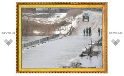 В Тульской области затоплено семь мостов