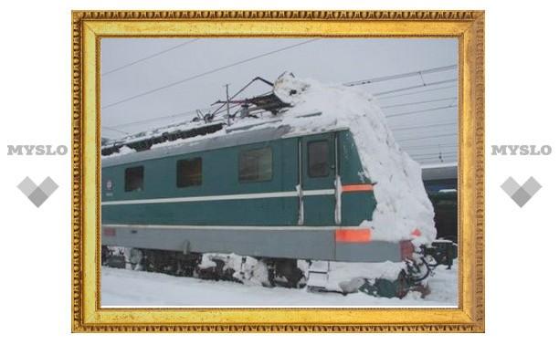 Снегопад не остановил тульские поезда!