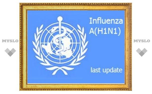 Число заболевших гриппом H1N1 приблизилось к 56 тысячам