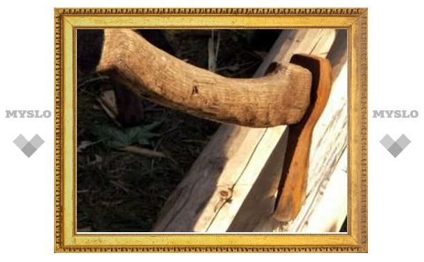 В Тульской области задержан лесоруб-нелегал