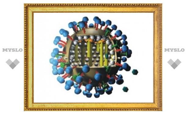 Эпидемия гриппа охватила большинство регионов России