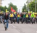 Веловыходные в Туле: большой велопарад и велоэкскурсии