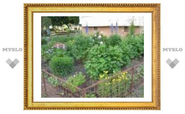 Туляки устроили во дворе высотки цветник