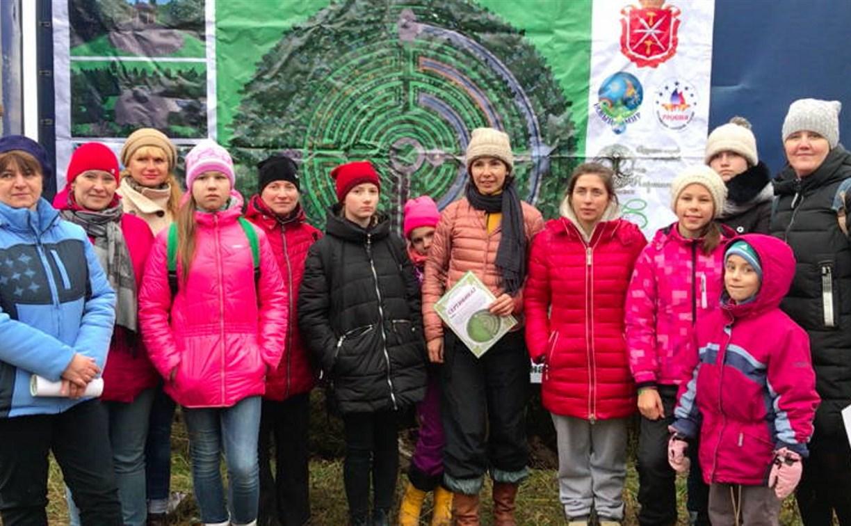 В Чернском районе сажают лес-лабиринт