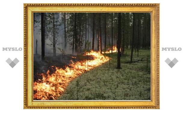 В Тульской области началась подготовка к пожароопасному сезону