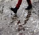 В Туле 23 ноября ожидается мокрый снег и гололедица