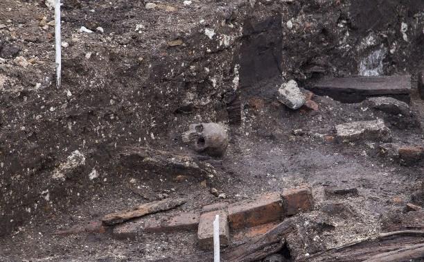 Грозит ли Туле холера или чума из-за найденных археологами гробов?