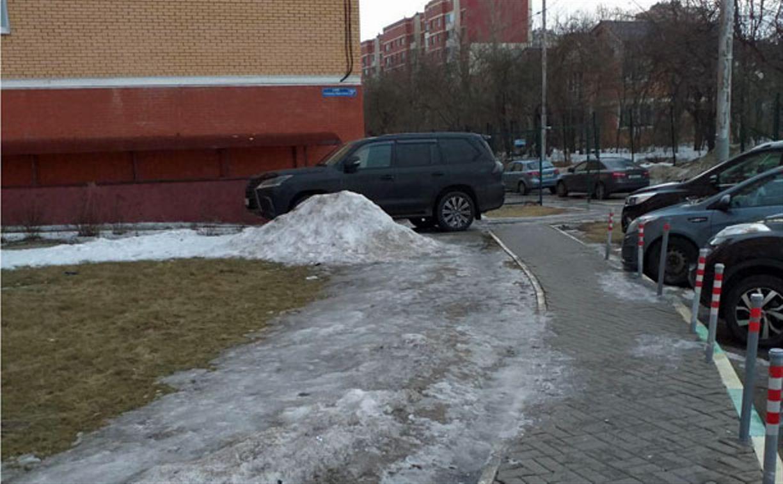 «Накажи автохама»: товарищи паркуются на газонах и пешеходных дорожках