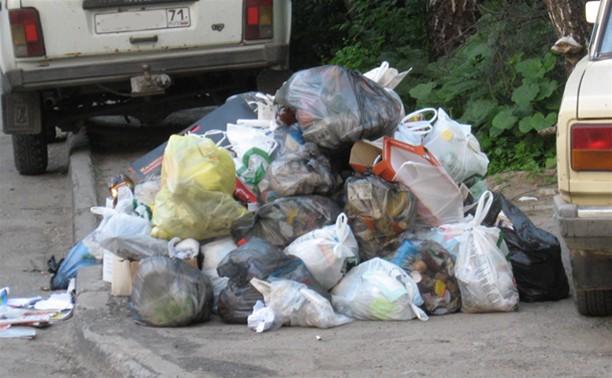 В Туле появится новая техника для уборки мусора