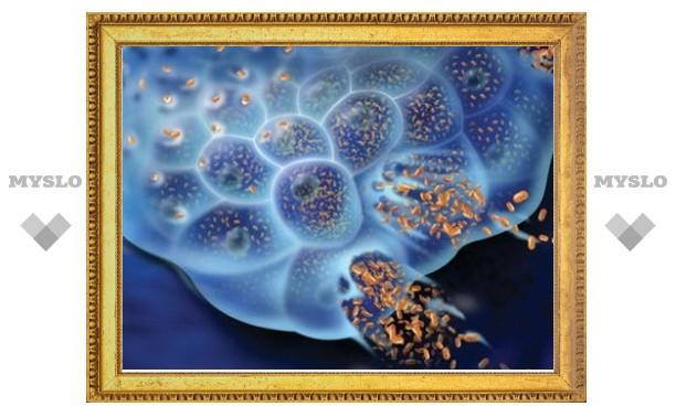 Ученые успешно испытали модифицированный вирус для лечения рака