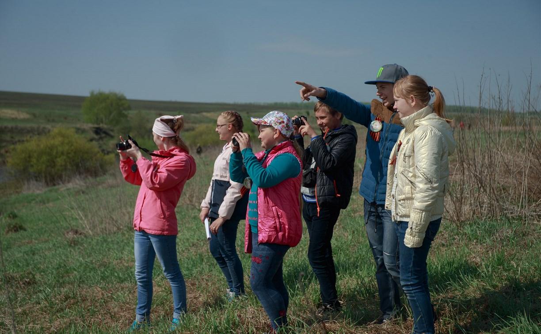 На Куликовом поле пройдёт конкурс фотонаблюдений за птицами
