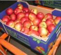 В Туле обнаружили партию запрещённых фруктов из Польши
