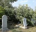 На тульском кладбище неизвестный осквернил могилу