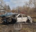 В Туле у частного дома загорелись трава и автомобиль