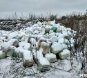 В Туле на незаконной свалке найдено более 4,5 тонн химикатов