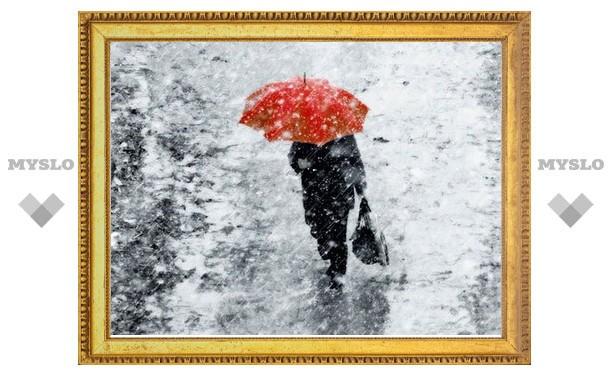 К концу недели в Туле выпадет первый снег