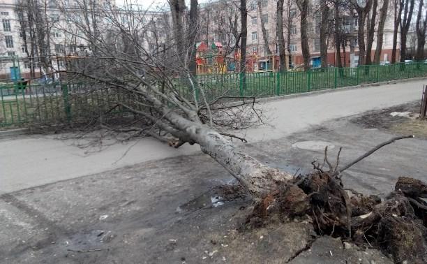 Последствия штормового ветра в Тульской области: фото и видео