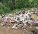 Куда жаловаться жителям Тульской области на несанкционированные свалки
