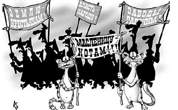 Выборы-2016: что ждет туляков