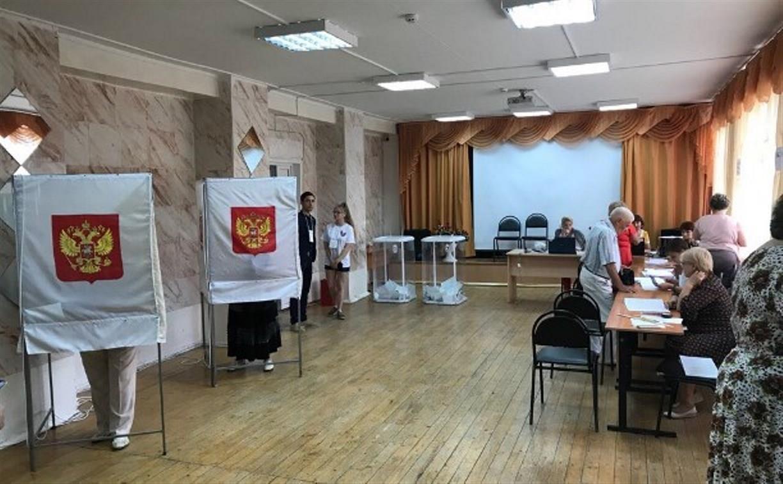 Кто такие общественные наблюдатели на выборах и зачем им целый штаб?