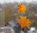 Погода в Туле 14 сентября: тепло, ветрено, небольшой дождь