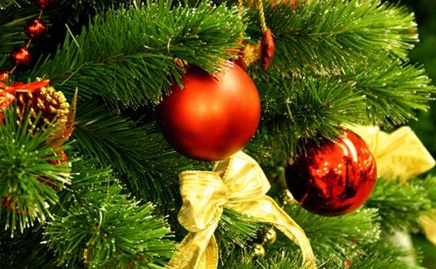 На спонсорские деньги власти купили для города 32-метровую новогоднюю елку