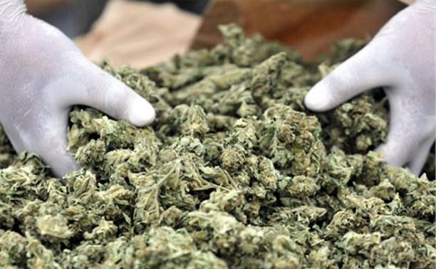 В Туле полицейские задержали двух перевозивших наркотики жителей Куркино
