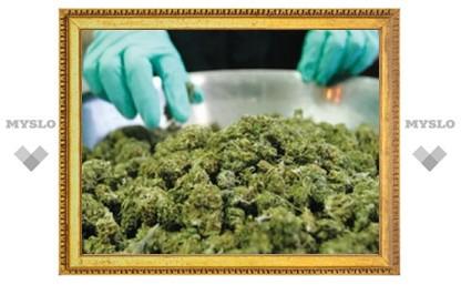 В Тульской области изъята рекордная партия марихуаны