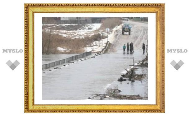 В Тульской области затоплено 10 мостов