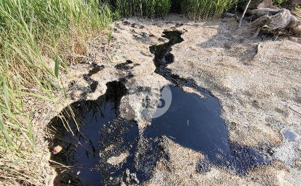 В тульских Комарках нефтепродукты вновь льются из земли