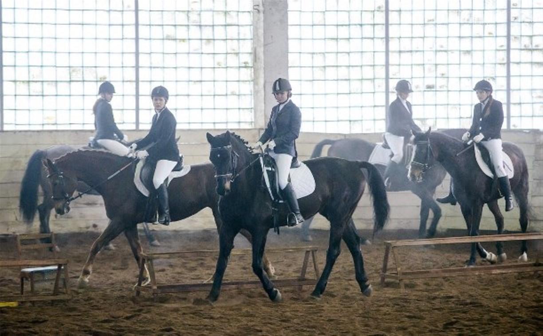 В Прилепах прошёл открытый любительский турнир по конному спорту