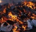 В Тульской области за сжигание мусора будут штрафовать на 5 000 рублей