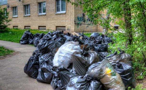 Весь мусор после субботников уберут до 4 июня
